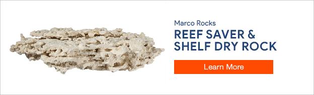 Marco Rocks