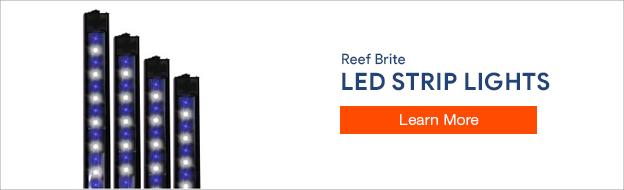 Reef Brite LED Strips