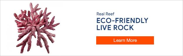Real Reef Rock