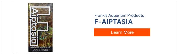Frank's F-Aiptasia