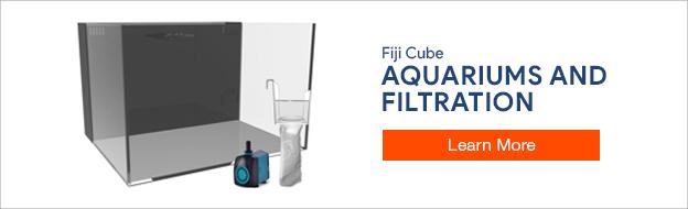 Shop Fiji Cube