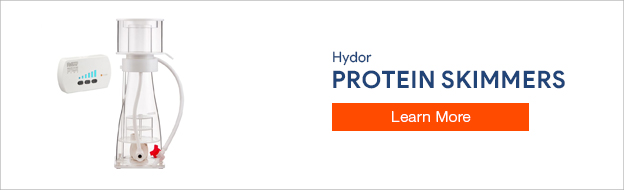 Hydor Protein Skimmer