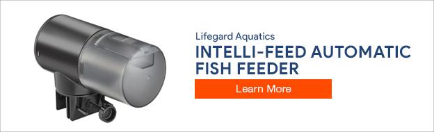 Lifegard Aquatics Intelli-feed