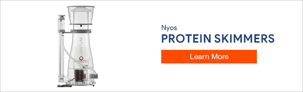 Nyos Protein Skimmer