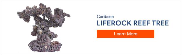 Caribsea Liferock Reef Tree Kit