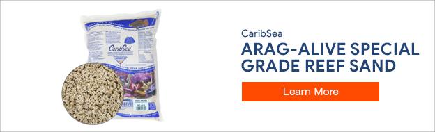 Arag-Alive Reef Sand